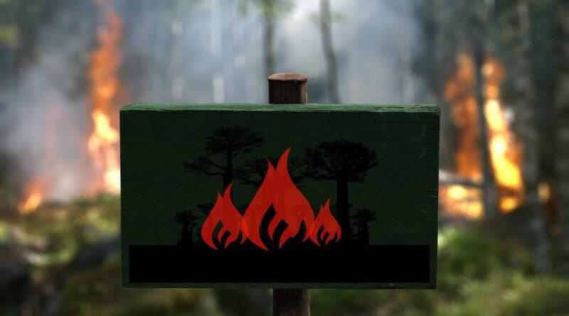 Waldbrand Hinweise Feuerwehr Derneburg Astenbeck